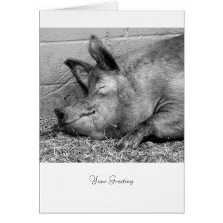 Schlafenschwein für jede Anlässe Karte