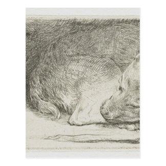 Schlafenwelpe durch Rembrandt Postkarte