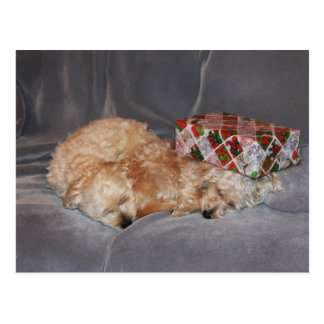 Schlafenwelpen-Feiertagspostkarte Postkarte