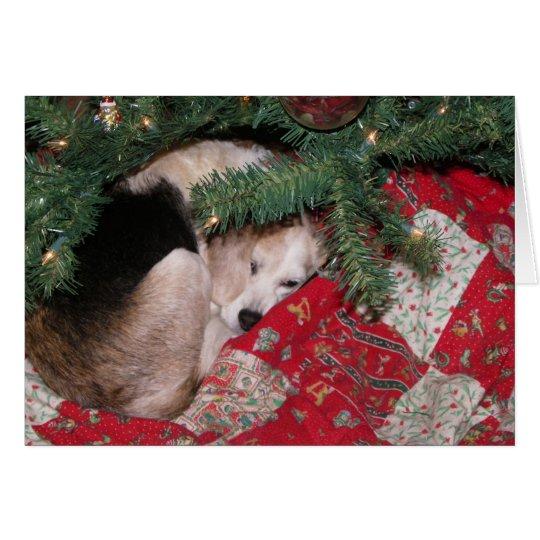 Schläfriger WeihnachtsBeagle Karte