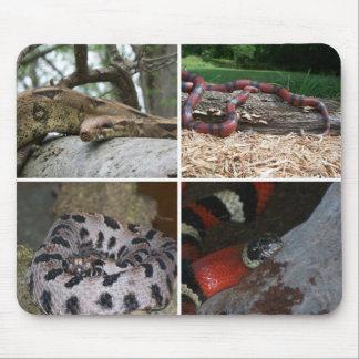 Schlangen-Collage Mousepads