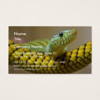 Schlangen-Reptil Visitenkarte