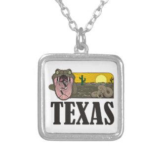 Schlangen-Staat von Texas, USA: Klapperschlange Versilberte Kette