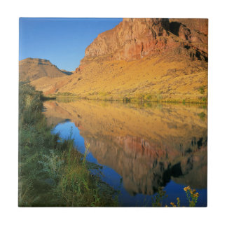 Schlucht USA, Oregon, Owyhee Fluss Fliese