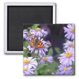 Schmetterling auf Blumen Quadratischer Magnet