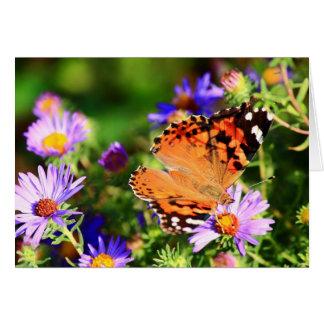 Schmetterling auf karte
