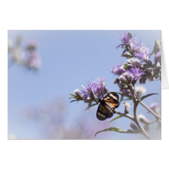 Schmetterling auf lila Blütenniederlassung Karte