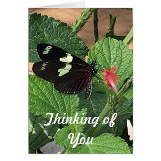Schmetterling, der an Sie denkt Grußkarte