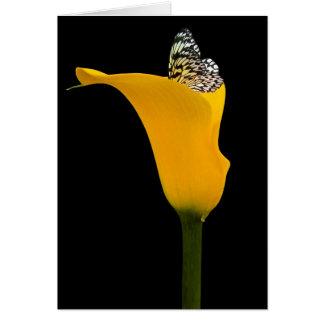 Schmetterling in der Callalilie Karte