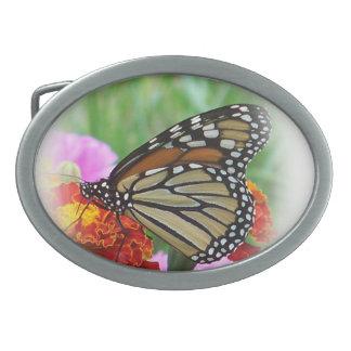 Schmetterling Ovale Gürtelschnallen