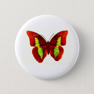 Schmetterling Runder Button 5,1 Cm