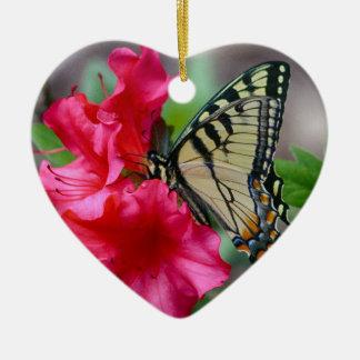Schmetterling träumt Verzierung