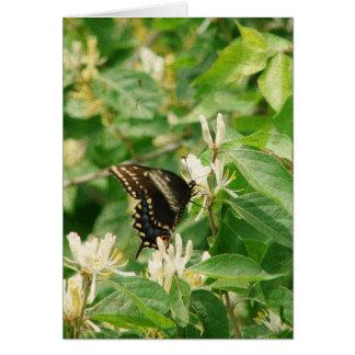 Schmetterlings-Geburtstag Karte