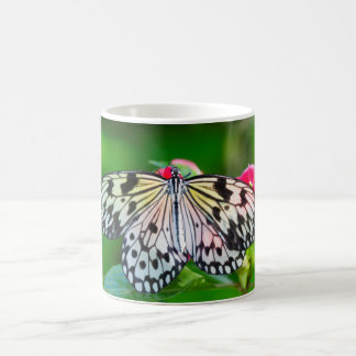 Schmetterlings-Natur-Foto-Tasse Kaffeetasse