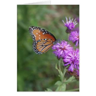 Schmetterlings-und Wildblume-Gruß-Karte Karte
