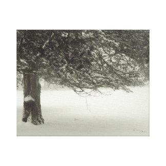 Schnee-Baum 2 Leinwanddruck