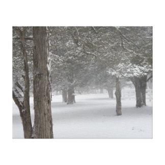 Schnee-Baum Leinwanddruck