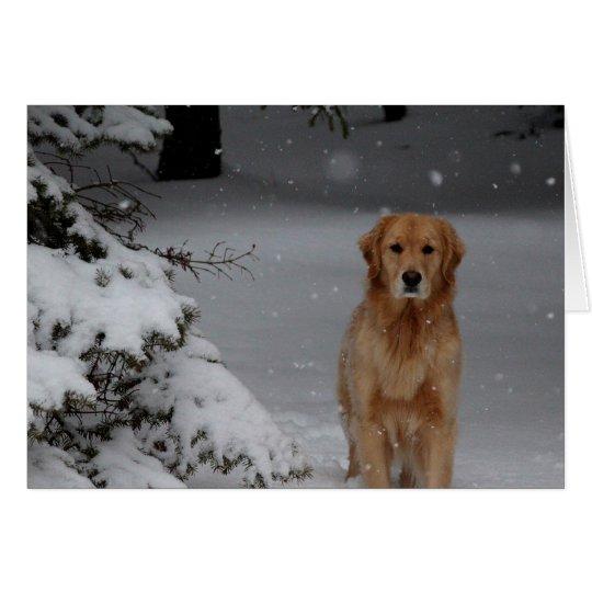 Schnee golden grußkarte