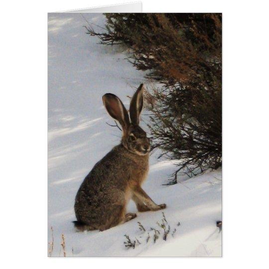 Schnee-Häschen Grußkarte