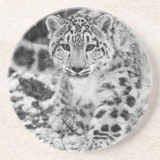 Schnee-Leopard Untersetzer