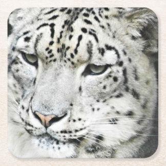 Schnee-Leopardnahaufnahme Rechteckiger Pappuntersetzer