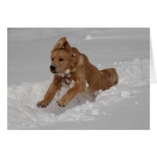 Schnee-Pflug! Grußkarte