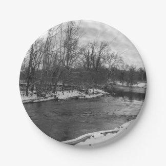 Schnee-Schönheits-James RiverGrayscale Pappteller