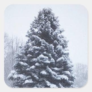 Schnee umfaßte quadratische Aufkleber des