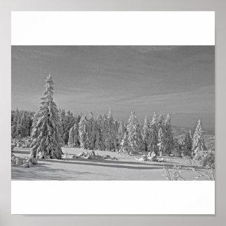 Schneelandschaft schwarz/weiss poster