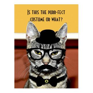 Schnurren-fect Katzen-Kostüm Postkarte