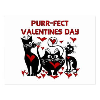 Schnurren-fect Valentinstag Postkarte