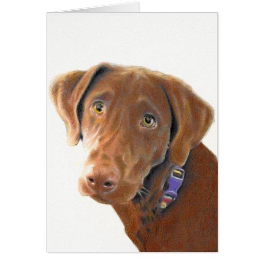 Schokoladen-Labradorgrußkarte, Hundekarte, Grußkarte