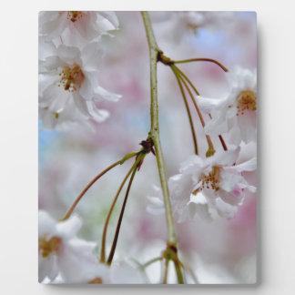 Schöne Blüten Fotoplatte
