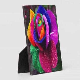 Schöne bunte Regenbogen-Rose Fotoplatte