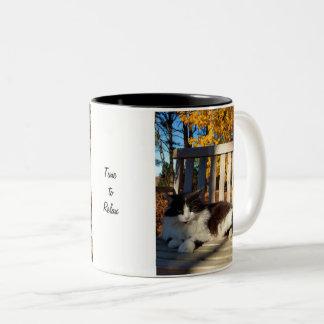 Schöne flaumige Katze in der Schwingen-Tasse Zweifarbige Tasse