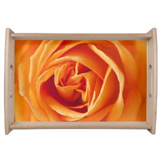Schöne gelbe Rosen-Blume mit Blumen Tablett