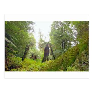 Schöne grüne Baumlandschaft der Natur von Postkarte