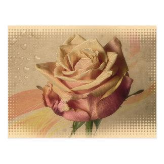Schöne Illustration der Vintagen Rose Postkarte