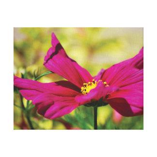 Schöne Nahaufnahme-Foto-Rosa-Blume auf Lila Leinwanddruck