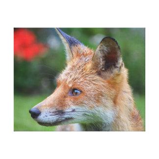 Schöne Nahaufnahmephotographie des Fuchses im Leinwanddruck