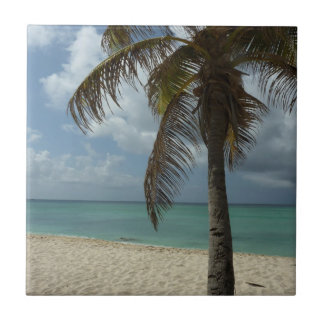 Schöne Natur-Szene Aruban Strand-I Kleine Quadratische Fliese