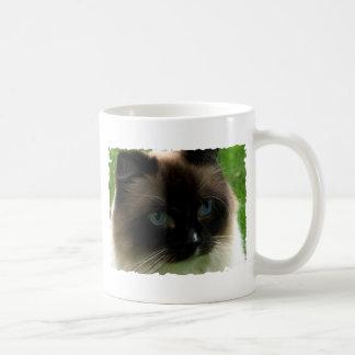 Schöne Ragdoll Katzen-Tasse Kaffeetasse