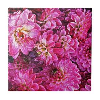 Schöne rosa Dahlien