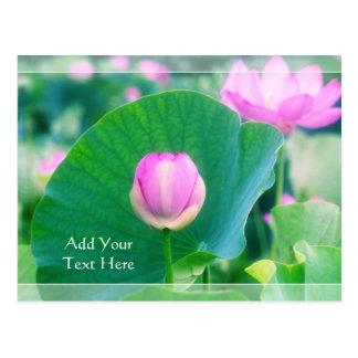 Schöne rosa Lotos-Knospen-Blumen-Grün-Blatt-Blüte Postkarte