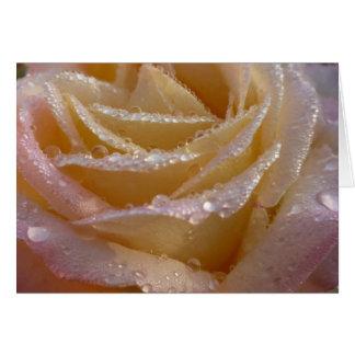 Schöne Rose mit Tau-Tropfen-Karte Karte