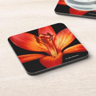 Schöne rote orange asiatische Lilie Gran Paradiso Getränkeuntersetzer