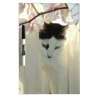 Schöne weiße und schwarze Katze Trockenlöschtafel