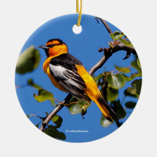 Schöner Bullocks Oriole der Birnen-Baum Keramik Ornament