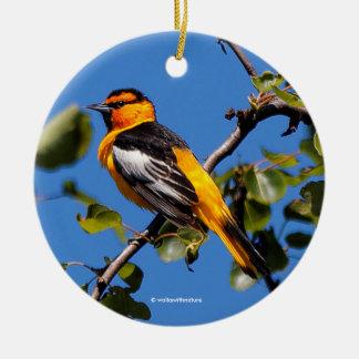 Schöner Bullocks Oriole der Birnen-Baum Rundes Keramik Ornament