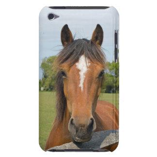 Schöner Fall Pferdekopf-iPod-Touch 4G, Geschenkide iPod Touch Hüllen